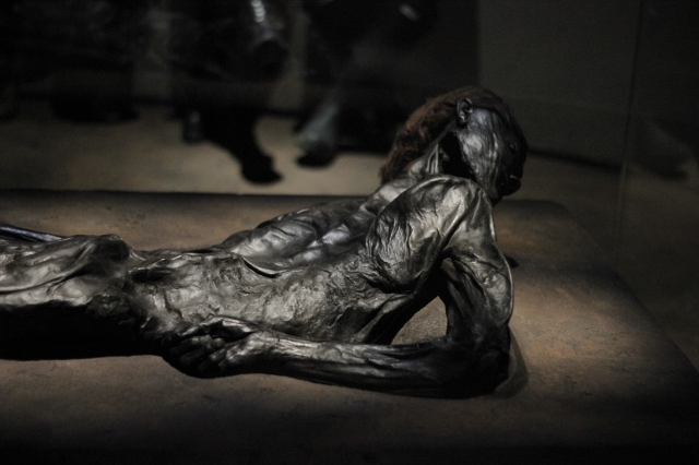 "I'd seen pictures of this mummy in books before, but had no idea he was found in Jutland. He is so well preserved, they even know what his last meal was (seeds and grains) and you can see the wrinkles in the skin on his hands and feet. The sulfuric acid in peat bogs made it so bacteria can't survive and prevents the decomposition process, which is why he looks so good for 2,000. The acid has essentially turned him to leather, a process I don't understand very well but the word ""tannins"" is involved. Before he was chucked into the bog he had his throat brutally slit, which is why they think he's an offering to the gods."